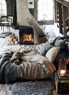 un lit, une cheminée, un chien... what else?
