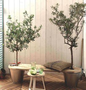banc-arbore-bosch_5368061